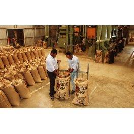 Café Sigri Nouvelle Guinée Organic